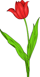 Tulip Icon Image Download