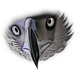 Eagle Head Illustration Image PNG Format