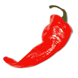 Cayenne Chilli Pepper Image Download